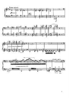 Réminiscences de 'Norma'. Transcription on Themes by Bellini, S.394: For piano by Franz Liszt