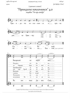 Come, let us worship 4.0 (podoben 'Vo vsju zemlju') - in RU: Come, let us worship 4.0 (podoben 'Vo vsju zemlju') - in RU by folklore, Rada Po