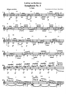 Movement I: Version for guitar by Ludwig van Beethoven
