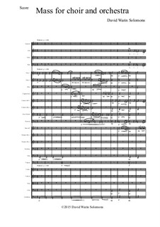 Mass for choir and orchestra: Score only by David W Solomons
