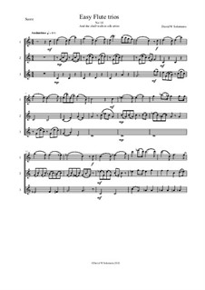 15 easy flute trios: No.14 She shall walk in silk attire by folklore