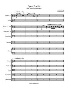 Open Prairie (for small ensemble): Open Prairie (for small ensemble) by Jordan Grigg