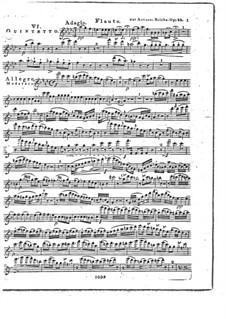 Woodwind Quintet in F Major, Op.88 No.6: Flute part by Anton Reicha