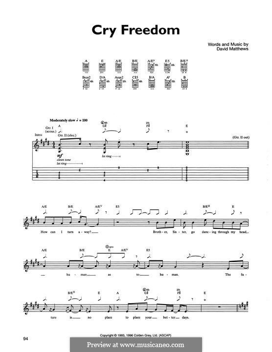Cry Freedom: For guitar with tab by David J. Matthews