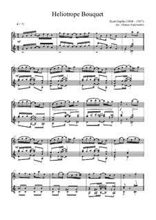 Heliotrope Bouquet: For flute and guitar by Scott Joplin, Louis Chauvin
