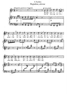 Rugiadose, odorose: Piano-vocal score by Alessandro Scarlatti