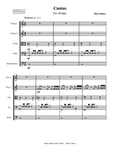 Cantus for string orchestra: Score by Hans Bakker