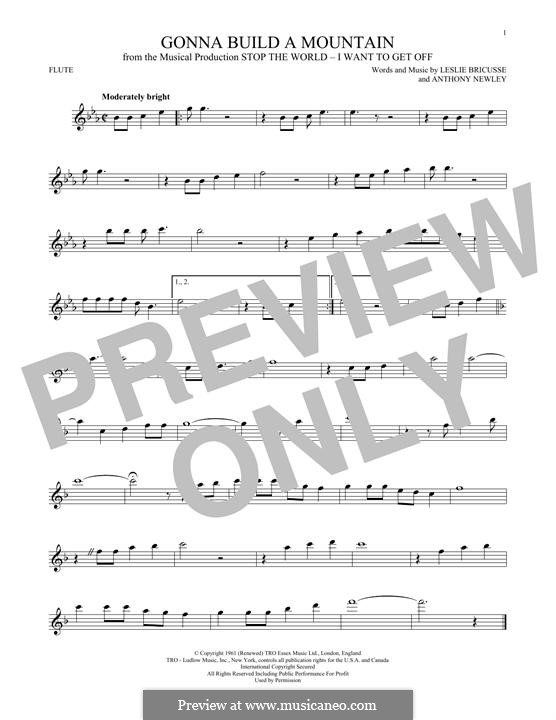 Gonna Build a Mountain: For flute by Anthony Newley