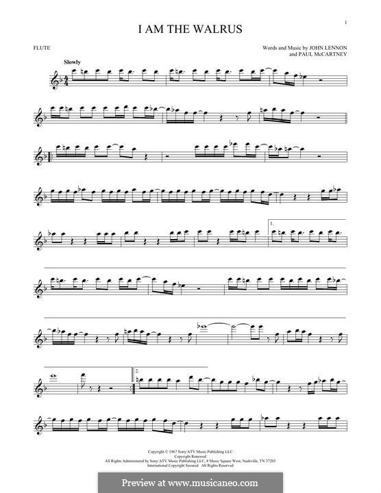 I am the Walrus (The Beatles): For flute by John Lennon, Paul McCartney