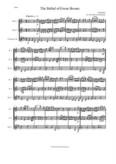 The Ballad of Green Broom: For wind trio - two flutes and clarinet by folklore, David W Solomons