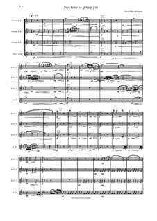 Not time to get up yet: For clarinet quartet (3 B flats, 1 Bass) by David W Solomons