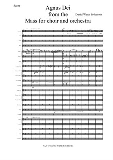 Agnus Dei from the Mass for choir and orchestra - score and parts: Agnus Dei from the Mass for choir and orchestra - score and parts by David W Solomons