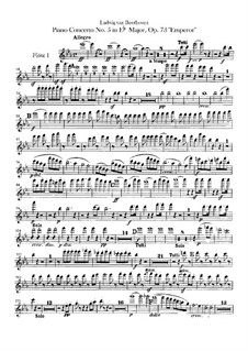 Complete Concerto: Flutes part by Ludwig van Beethoven