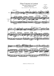 Concerto in A Minor for Flute and Strings: Version for flute and piano, CS/Sdn2 by Domenico Sarro