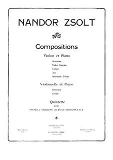 Piano Quintet in B Flat Minor: Violin I part by Nándor Zsolt