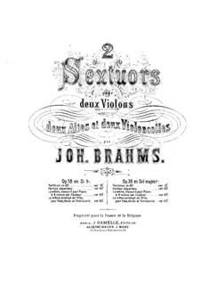 String Sextet No.2 in G Major, Op.36: Violin I part by Johannes Brahms