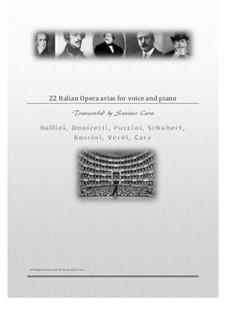 22 Italian opera arias for solo voices and piano: 22 Italian opera arias for solo voices and piano, CS1902 by Franz Schubert, Vincenzo Bellini, Gaetano Donizetti, Giacomo Puccini, Gioacchino Rossini, Giuseppe Verdi, Santino Cara