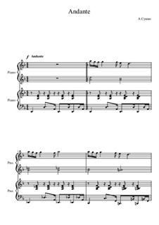 Andante, Ор.16: Andante by Alexander Sushko