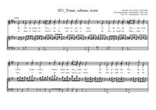 Traue, schaue, wem: Traue, schaue, wem by Otto Nicolai