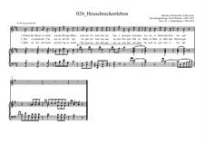 Heuschreckenleben: Heuschreckenleben by Ernst Richter