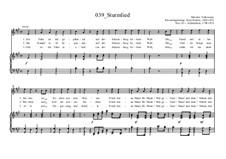 Sturmlied: Sturmlied by Ernst Richter