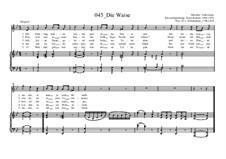 Die Waise: Die Waise by Ernst Richter