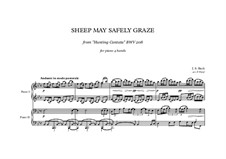 The Lively Hunt is All My Heart's Desire, BWV 208: Sheep May Safely Graze, for piano four hands by Johann Sebastian Bach