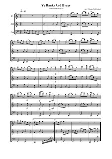 Ye Banks and Braes: For flute, bassoon and alto flute by folklore