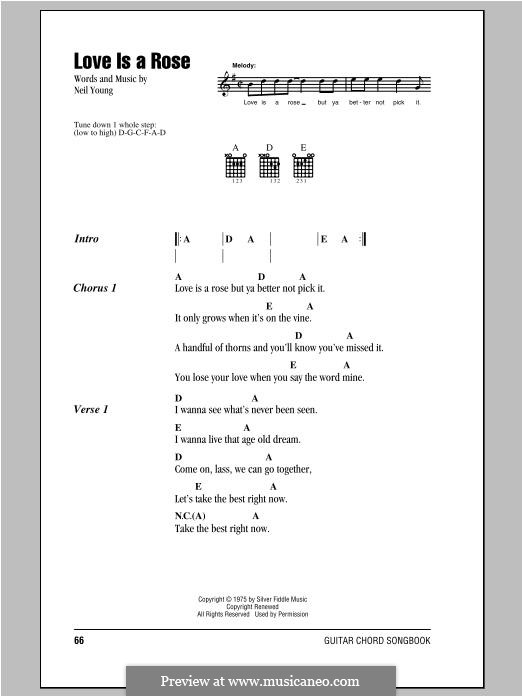Love is a Rose: Lyrics and chords by Neil Young