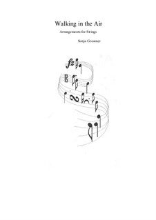 Walking in the Air. Arrangement for strings: Walking in the Air. Arrangement for strings by Sonja Grossner