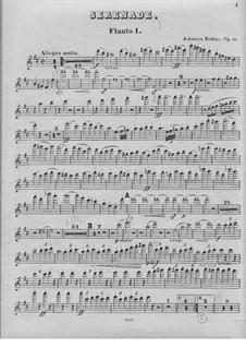 Serenade No.1 in D Major, Op.11: Flute I part by Johannes Brahms