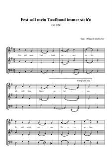 Fest Soll Mein Taufbund Noten Und Text Pdf