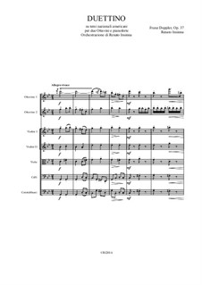Duettino, on american traditional songs, Op.37: Arrangement for two piccolo and string orchestra by Franz Doppler