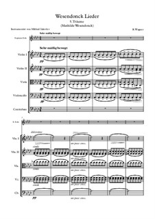 Wesendonck Songs, WWV 91: No.5 Träume, for voice and string quintet by Richard Wagner