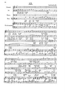 Dich meiden zwingt : Dich meiden zwingt by Ludwig Senfl