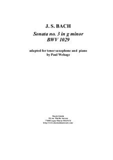 Sonata for Viola da Gamba and Harpsichord No.3 in G Minor, BWV 1029: Arrangement for tenor saxophone and piano by Johann Sebastian Bach