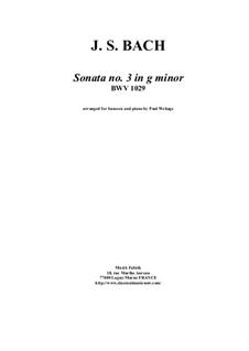 Sonata for Viola da Gamba and Harpsichord No.3 in G Minor, BWV 1029: Arrangement for bassoon and piano by Johann Sebastian Bach