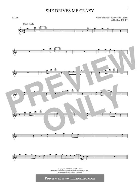 She Drives Me Crazy (Fine Young Cannibals): For flute by David Steele, Roland Gift