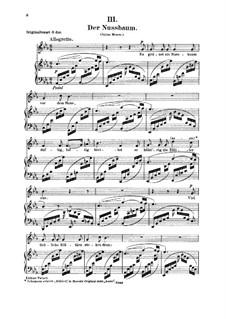No.3 Der Nussbaum (Le noyer): For voice and piano by Robert Schumann