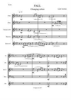 Fall Into Place – Woodwind quintet: Fall Into Place – Woodwind quintet by Gary Mosse