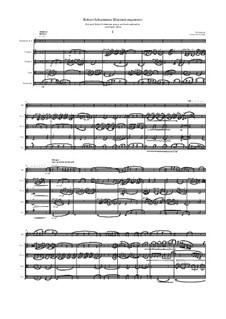 Robert Schumanns Klarinettenquintett: Robert Schumanns Klarinettenquintett by Robert Schumann