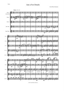 Just a Few Details: For flute quintet (with optional piccolo) by David W Solomons