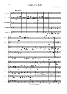 Just a Few Details: For clarinet quintet (4 B flats and 1 bass) by David W Solomons