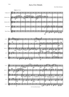 Just a Few Details: For clarinet quintet (E flat, 2 B flats, alto and bass) by David W Solomons