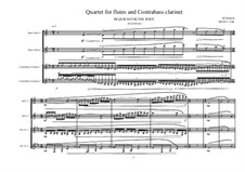 Quartet for multiple flutes and 2 Contrabass clarinets, MVWV 1166: Quartet for multiple flutes and 2 Contrabass clarinets by Maurice Verheul