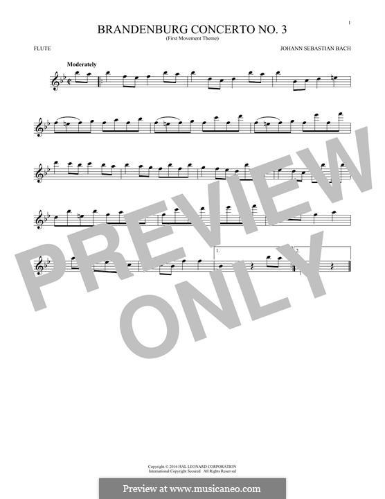 Brandenburg Concerto No.3 in G Major, BWV 1048: Movement I (Theme). Version for flute by Johann Sebastian Bach