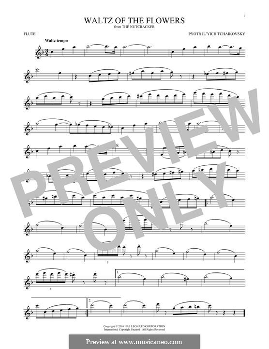 No.8 Waltz of the Flowers: For flute by Pyotr Tchaikovsky