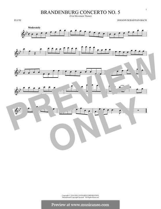 Brandenburg Concerto No.5 in D Major, BWV 1050: Movement I (Theme), for flute by Johann Sebastian Bach