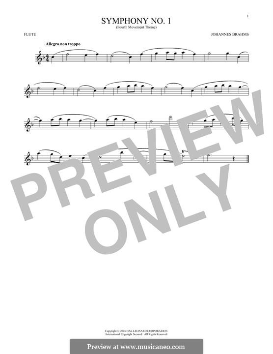 Movement IV: Excerpt. Version for flute by Johannes Brahms