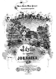 Erinnerung an Steinbach, Op.32: Erinnerung an Steinbach by Johann Nepomuk Kafka